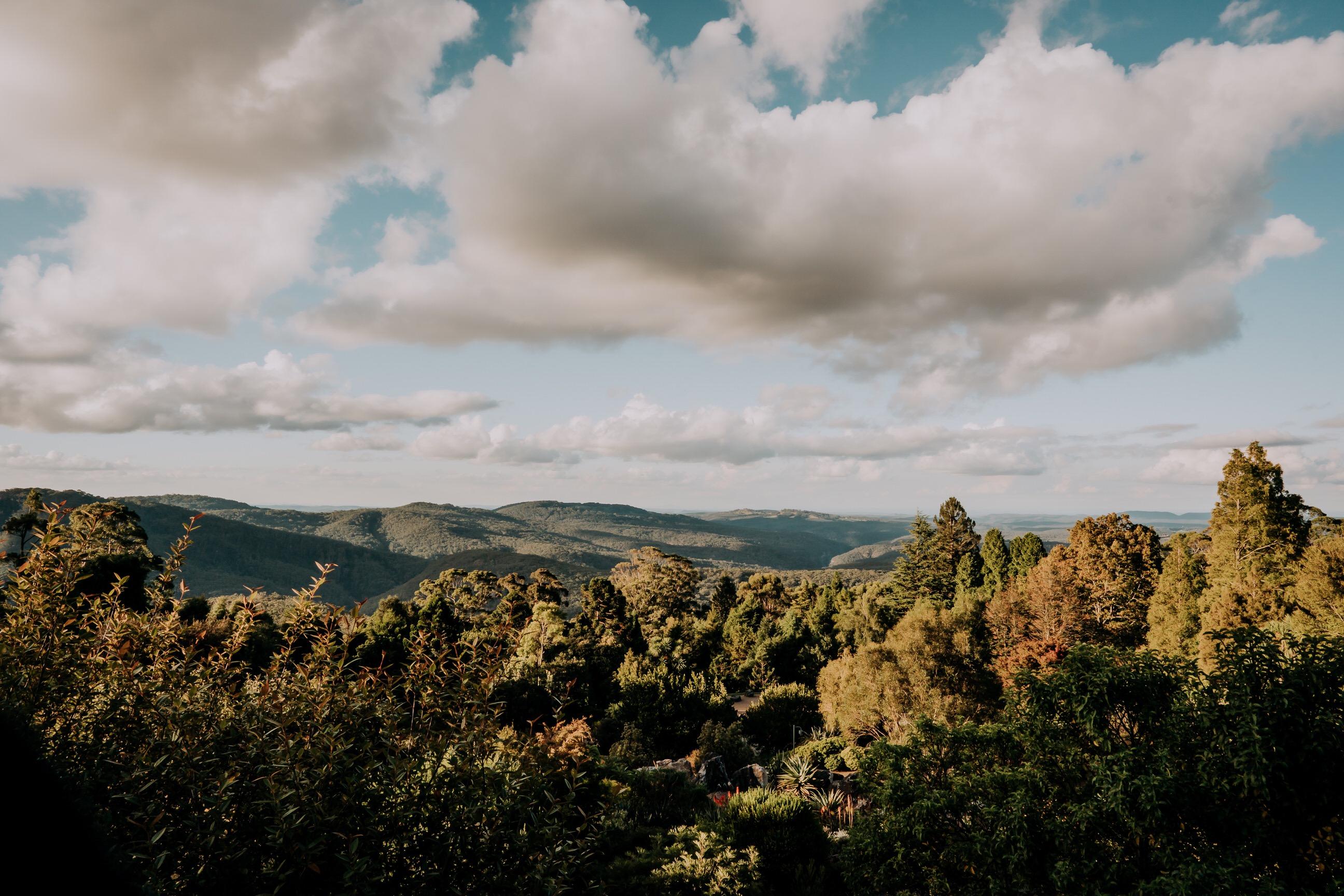 ava-me-photography-mikaela-jesse-mt-tomah-blue-mountains-botanic-gardens-engagement-1