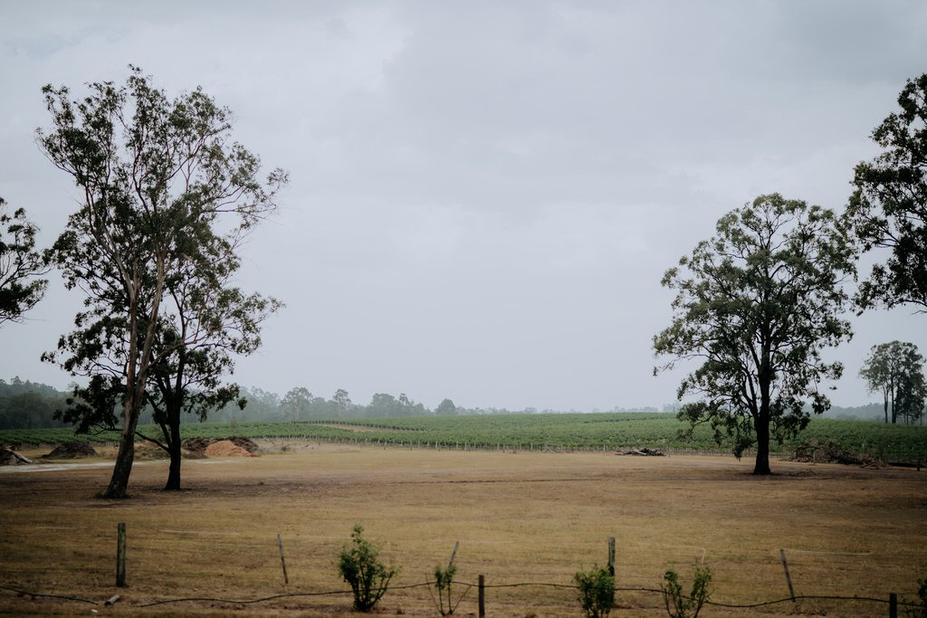ava-me-photography-zoe-steven-enzo-hunter-valley-ironbark-hill-vineyard-pokolbin-157
