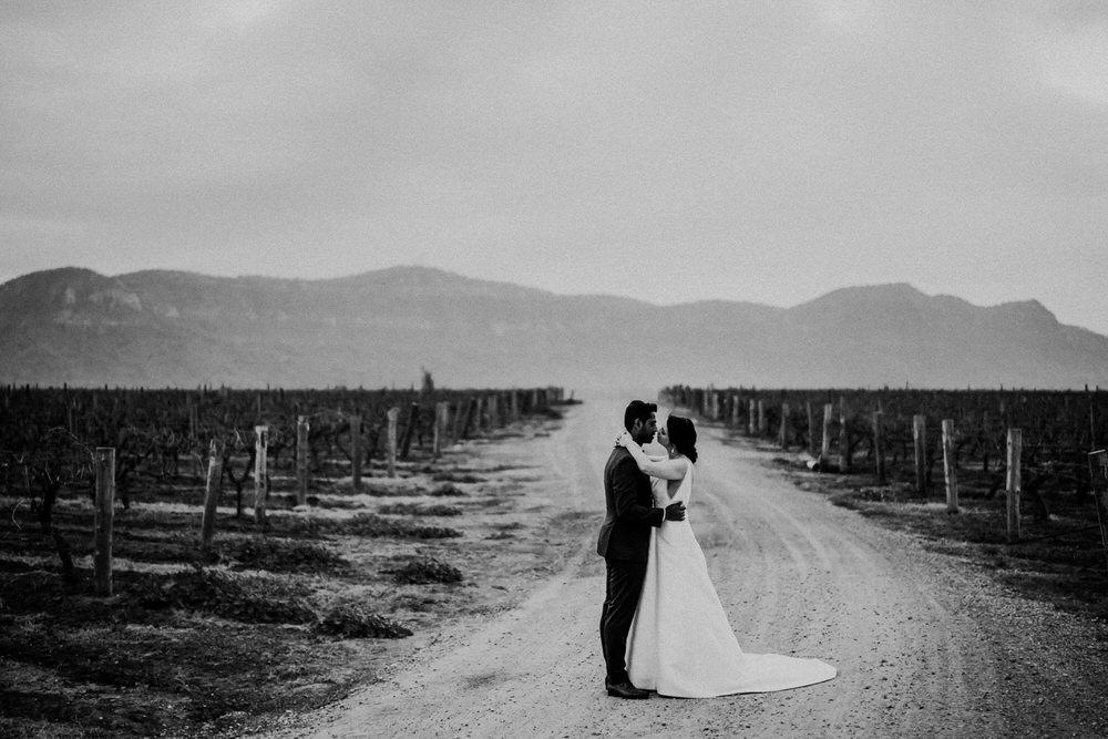 ava-me-photography-ada-elroy-enzo-hunter-valley-ironbark-hill-vineyard-wedding-608bw-1