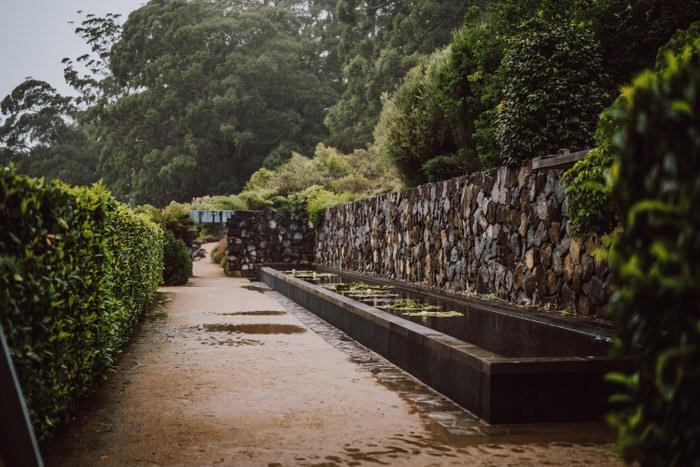 ainslea-tim-mount-tomah-botanic-gardens-loxley-on-bellbird-kurrajong-252