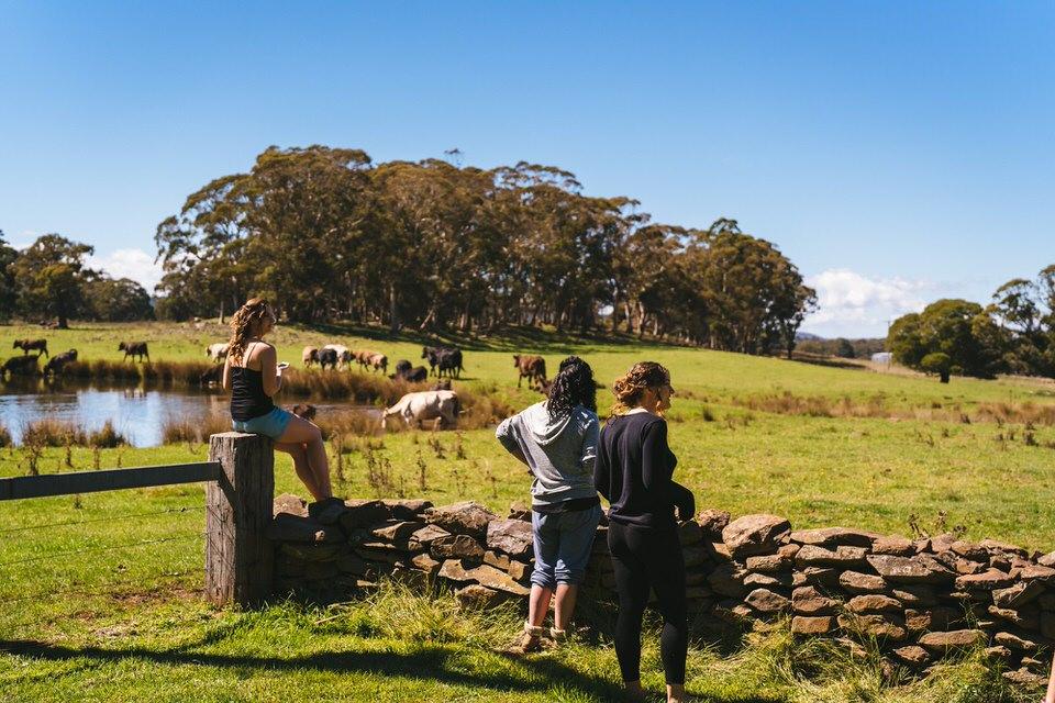 brooke-philip-porters-retreat-farm-brae-lossie-farm-stay-31