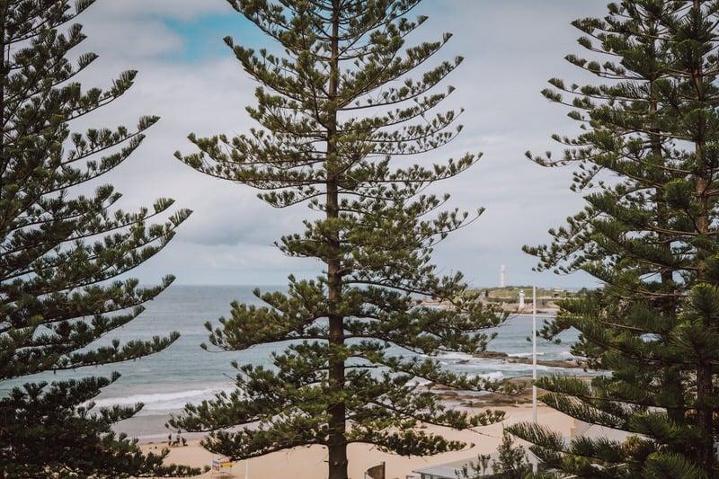 corrina-jamie-novotel-wollongong-towradgi-beach-6