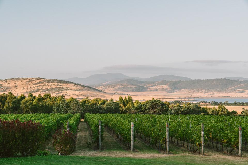 laura-sam-frogmore-creek-winery-hobart-tasmania-344
