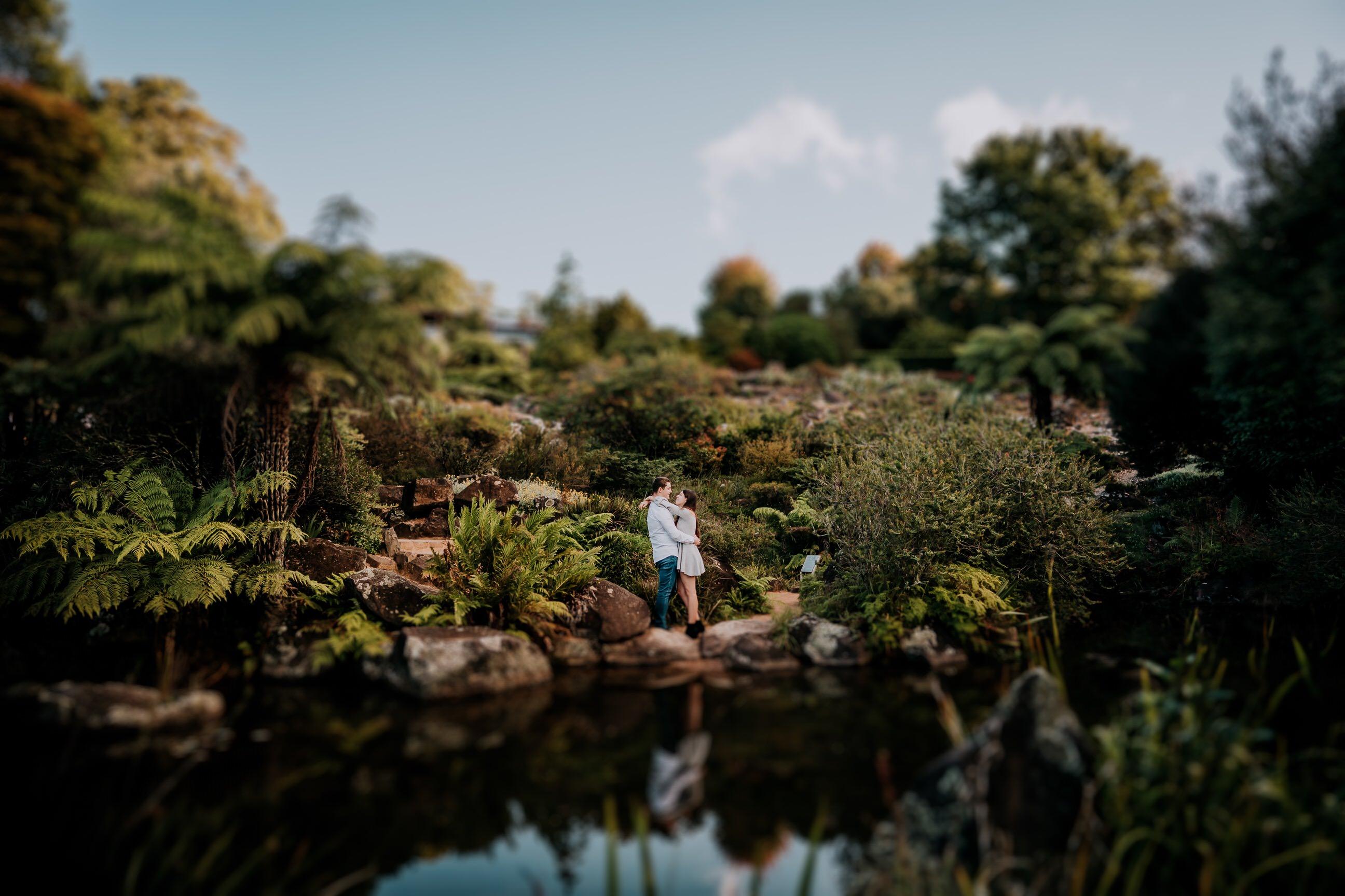 ava-me-photography-mikaela-jesse-mt-tomah-blue-mountains-botanic-gardens-engagement-19