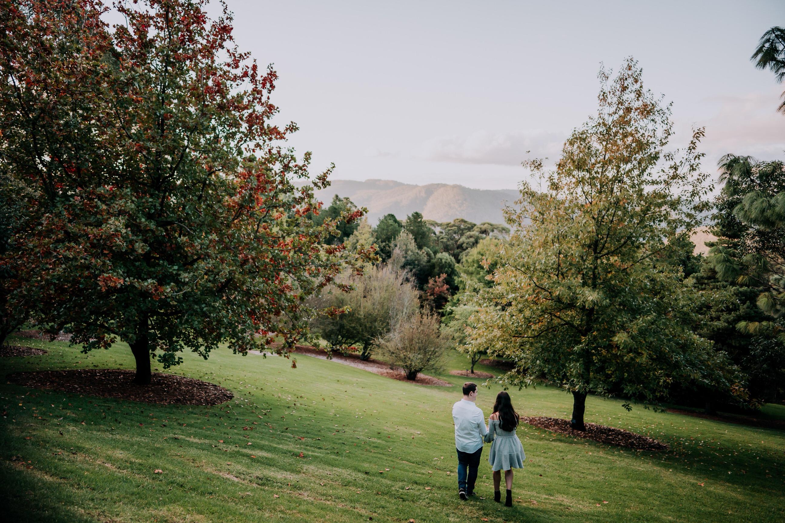 ava-me-photography-mikaela-jesse-mt-tomah-blue-mountains-botanic-gardens-engagement-56