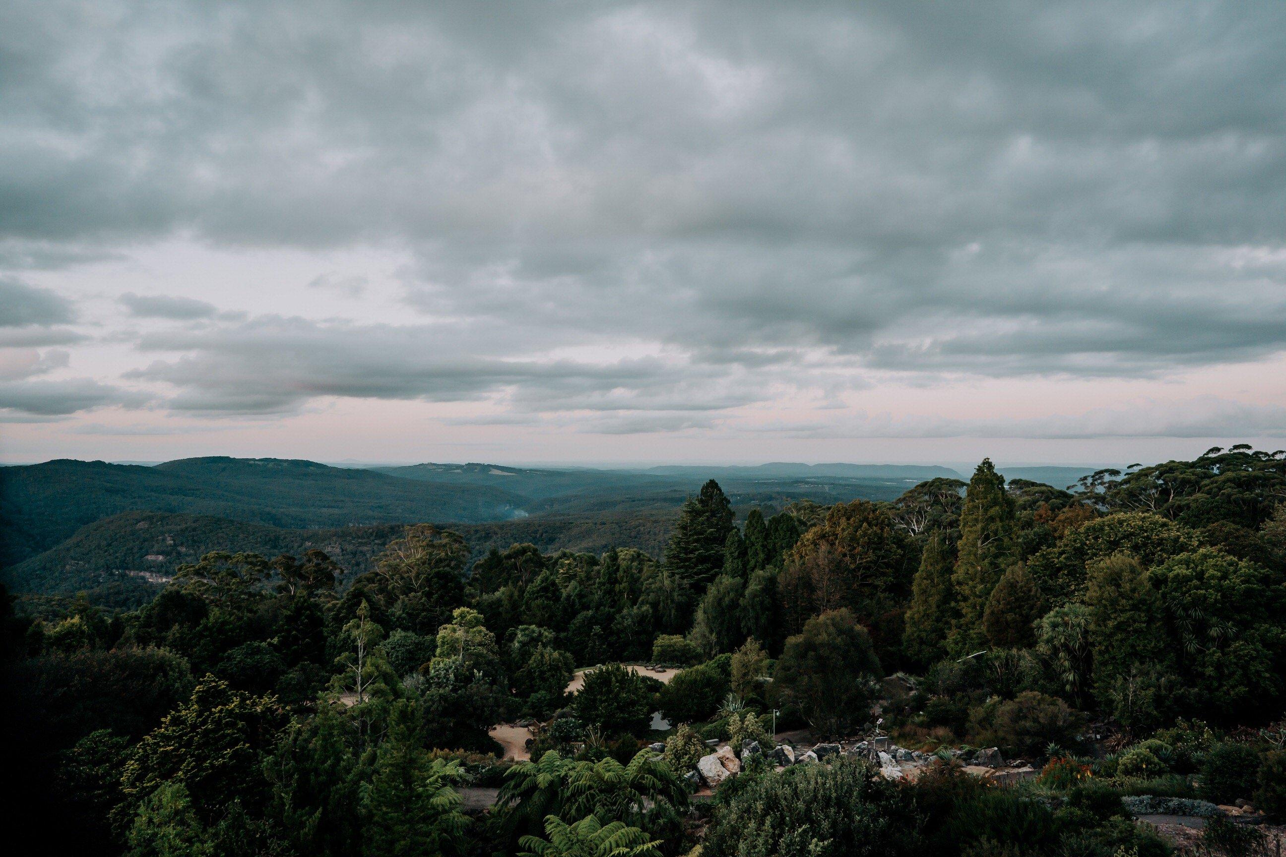 ava-me-photography-mikaela-jesse-mt-tomah-blue-mountains-botanic-gardens-engagement-73