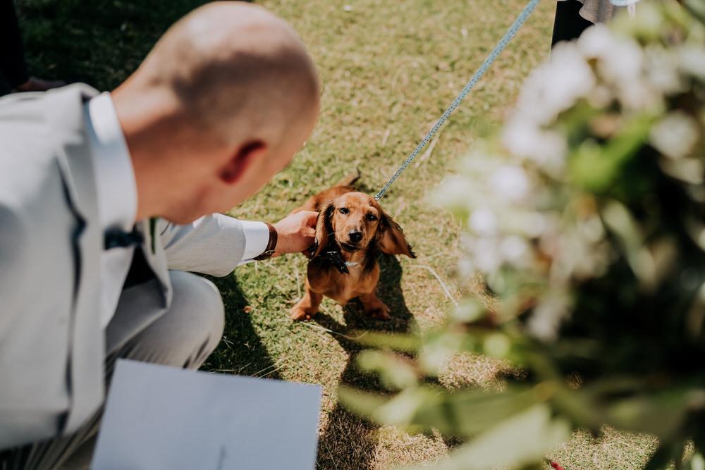 ava-me-photography-nicole-zane-barooga-wedding-369
