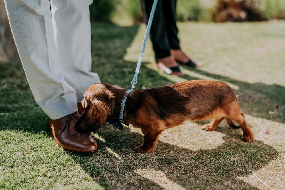 ava-me-photography-nicole-zane-barooga-wedding-372
