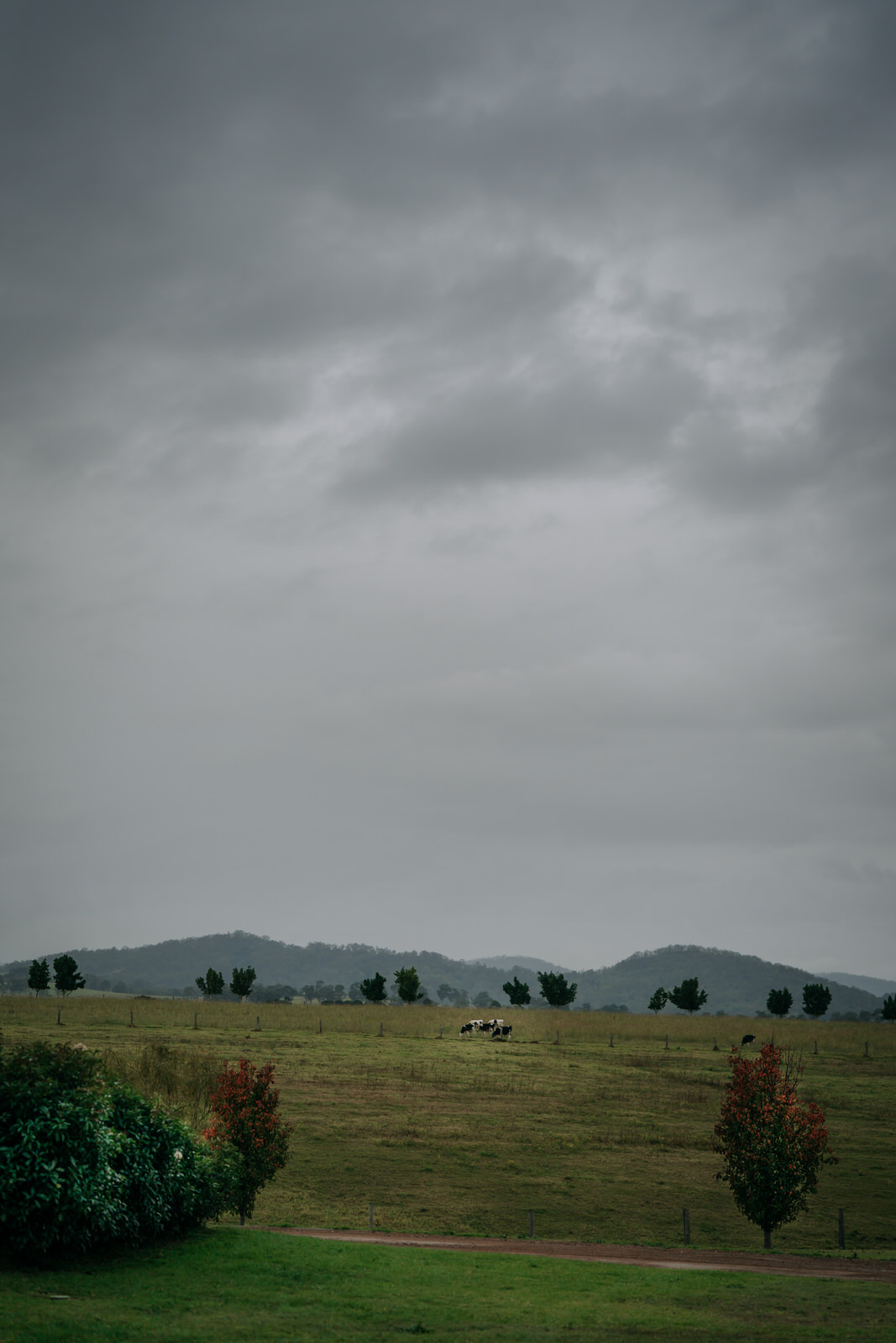 ava-me-photography-samantha-samuel-wedding-calvin-estate-hunter-valley-112